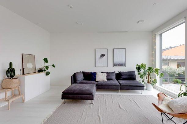 Iso vaalea huone ja skandinaavinen sisustus. Kuvittele huone ilman viherkasveja - melkoinen ero vai mitä?