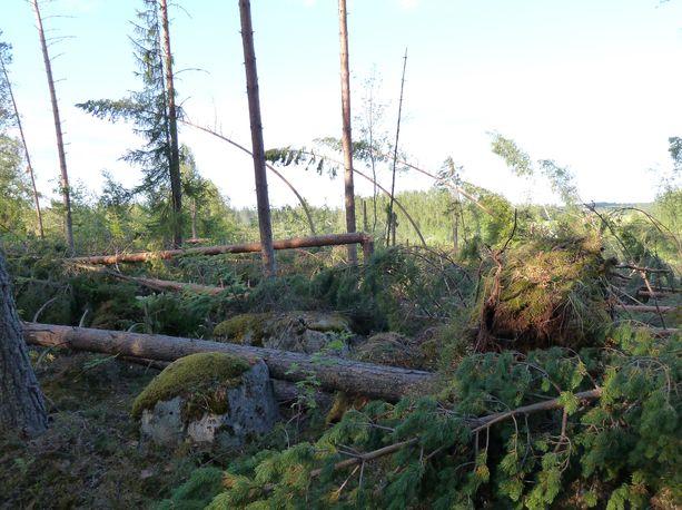 Kesäkuinen Aatu-myrsky aiheutti vahinkoja ympäri Suomea. Kuvituskuva.