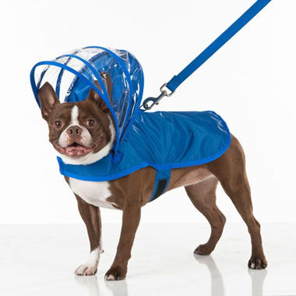 Tästä koiralle kiva saderotsi!