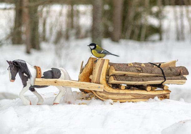 Tukkirekiaiheinen lintulauta on Eeron oma suosikki.