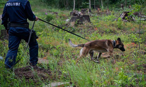 Poliisikoira löysi nopeasti parkkipaikan lähelle kaivetun amfetamiinikätkön (kuvituskuva).