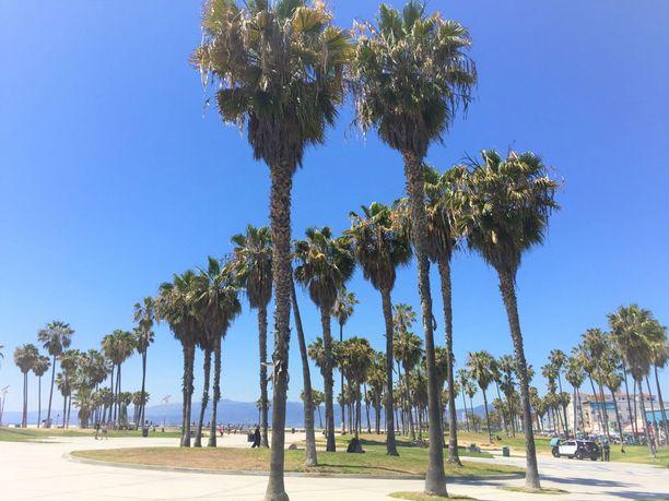 Venice Beach, Los Angeles.