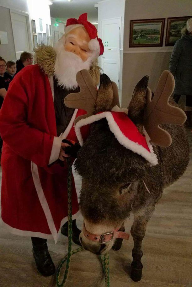 Anton-aasi tai kunnian toimia joulupukin apurina.