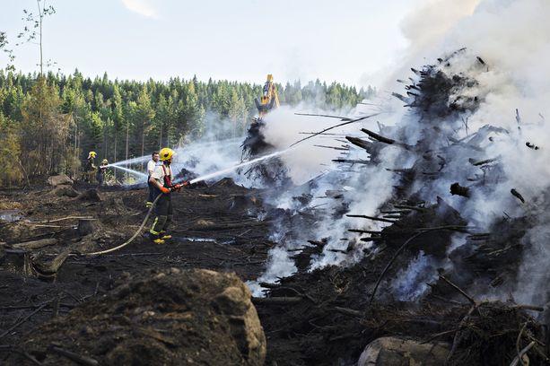 Poikkeuksellinen kuivuus sai metsät syttymään roihuun myös Suomessa. Kuvituskuva.
