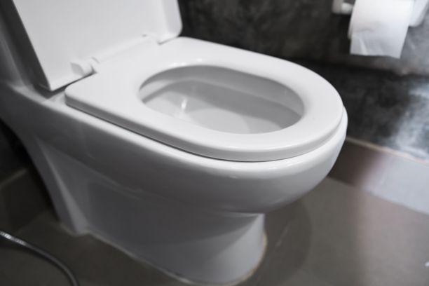 Helppo niksi kohentaa vessan tunnelmaa on vaihtaa esimerkiksi vessanpöntön kansi.