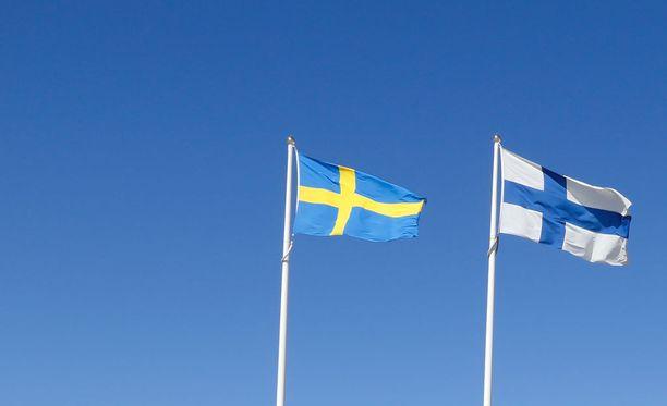 Järjestelmien väliin putoaminen johtuu Erikssonin mukaan siitä, että tapauksia on verrattain vähän, eikä Suomen ja Ruotsin sosiaaliturvajärjestelmiä ole sovitettu yhteen.