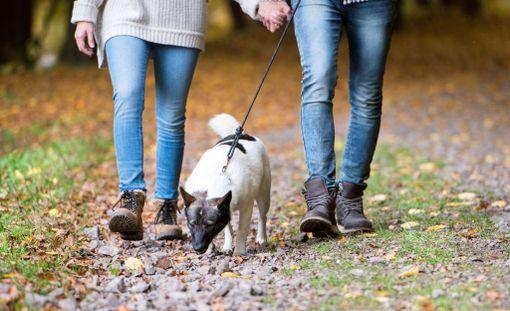 Ammattimaiseksi huijariksi paljastunut mies oli naisten mukaan fiksu ja sympaattinen. Hän muun muassa auttoi erään uhrinsa koiran ulkoiluttamisessa.