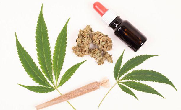 Lääkekannabis ei ole samanlaista kuin viihdekäyttökannabis.