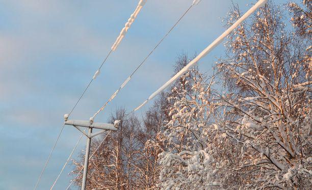 Eniten ylijäämää ovat rohmunneet isot sähkönjakelijat Elenia ja Caruna.