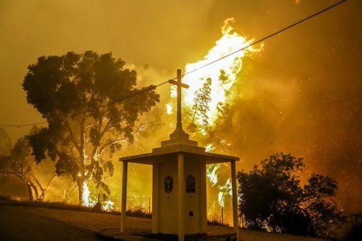 Metsäpaloa ei ole vieläkään saatu sammutettua. Sitä vastaan taistelee edelleen yli tuhat palomiestä.