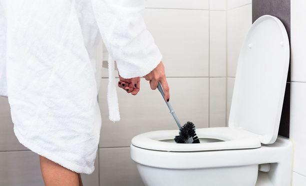 Hyvin likainen vessanpönttö tarvitsee myös harjaa.