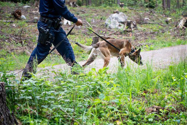 Oulun poliisin koirapartio seurasi terveyskeskusmurrosta epäiltyjen jälkiä läheiseen kerrostaloon. Kuvituskuva.