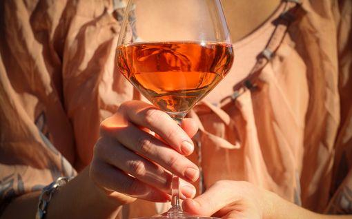 Nämä viinit eivät hetkessä pilaannu - 3 hyvää hanapakkausta