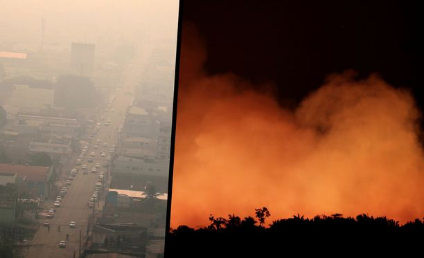 Kuvat Amazonin sademetsän tuhoutumisesta ja ilmiliekeistä ovat järkyttäneet koko maailmaa.