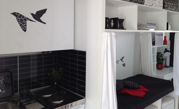 Konttiin sisältyy kaikki asumisen perusasiat, muun muassa toimiva keittiö.