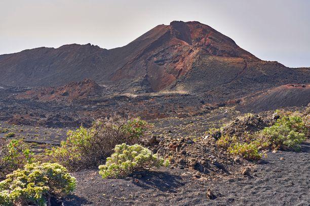La Palma on vulkaaninen saari. Kuvassa saaren eteläkärjen Teneguía-tulivuori.