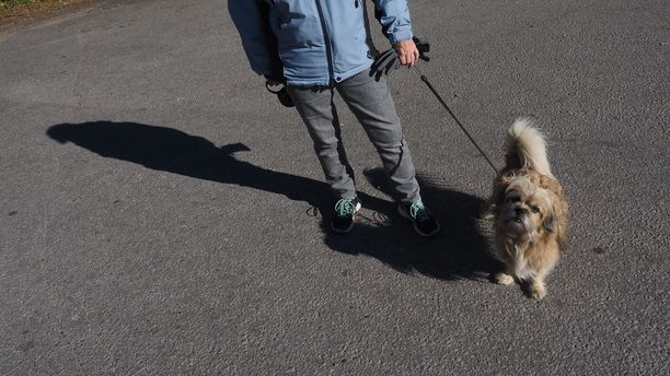 -Pandoja on Euroopassakin eri paikoissa. Kuka tulee Suomeen ja varsinkin Ähtäriin, ihmettelee Nalle-koiraansa ulkoiluttanut Tuula.