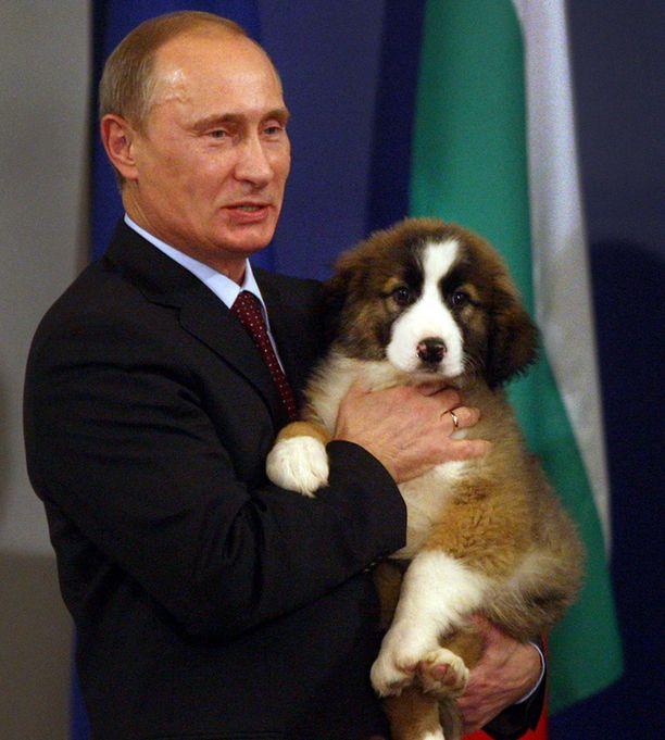 Putin tahtoo apua koiran nimeämisessä.