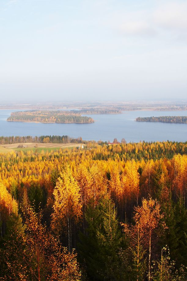 Lapinlahden Väisälänmäeltä pääsee ihailemaan savolaista järvimaisemaa.
