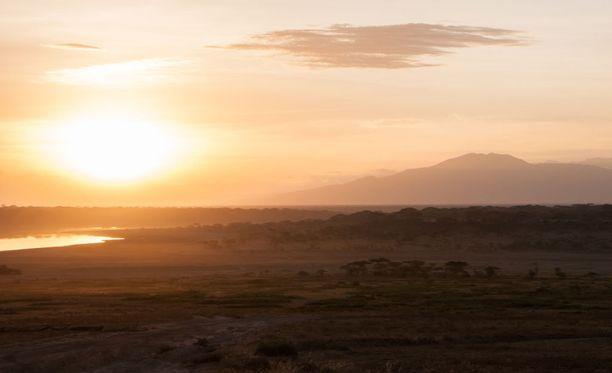Serengeti, Tansania. Kuvituskuva.