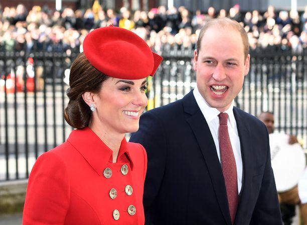 Katella ja Williamilla on pitkä yhteinen historia.