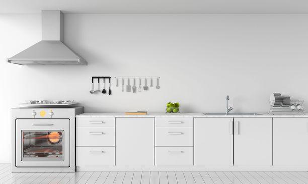 Tässä keittiössä on tyhjää seinätilaa, johon voisi kiinnittää hyllyjä ja kaapistoja lisäsäilytystilan saamiseksi. Minimalismista kuitenkin kymmenen pistettä ja papukaijamerkki.