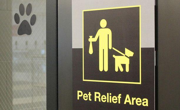 Kaikille suurille amerikkalaisille lentokentille on tulossa lemmikkien vessa elokuuhun mennessä.