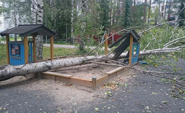 Kaatunut puu tuhosi lasten leikkipaikan Jyväskylässä Jussinpartatiellä.