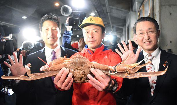 Lumitaskurapu on Japanissa arvostettu herkku, mutta maksaisitko tästä saksiniekasta 42 000 euroa?