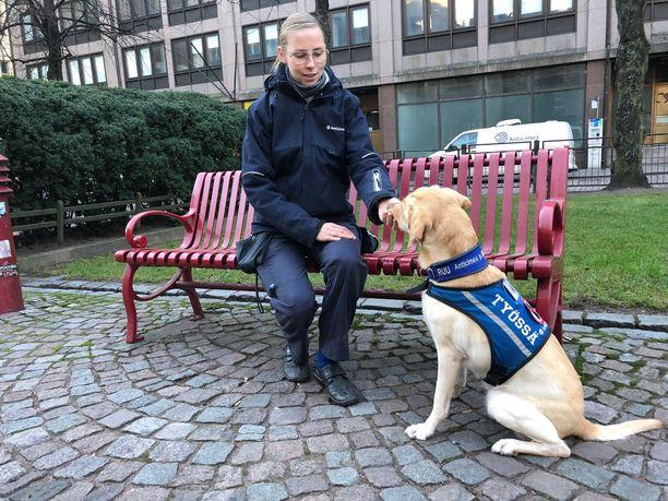 Lutikkakoiran ohjaaja Karita Häkkinen on joskus vienyt koiran pois, koska on huomannut, että sitä ei tarvita, sillä luteet ovat näkyneet paljain silmin hänelle itselleen heti.
