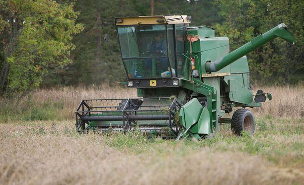 Valiokunta on huolissaan Suomen maataloustuotannosta. Kuvituskuva.