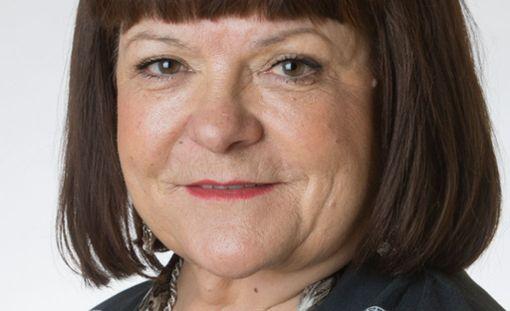 Entinen perussuomalaisten, nykyinen demareiden kansanedustaja Maria Tolppanen pitää hallituksen esitystä työelämäkokeilusta orjatyön ehdottamisena.