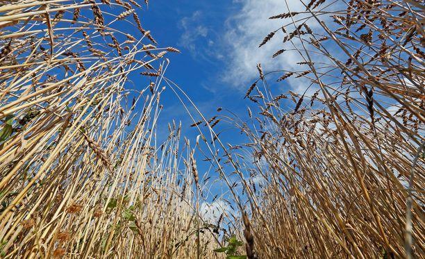 Maatalouspolitikkaa koskevissa neuvotteluissa saatiin kolmen vuoden neuvottelujen jälkeen sopu.