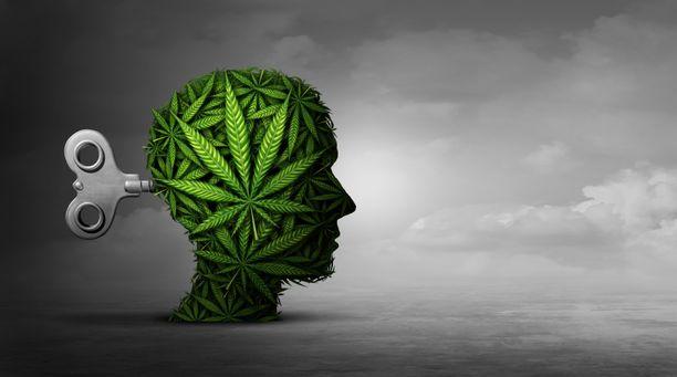 Kannabis voi tarjota elämyksiä, mutta myös ansoja.