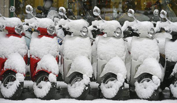 Vespat lumen peitossa Zürichissä Sveitsissä.