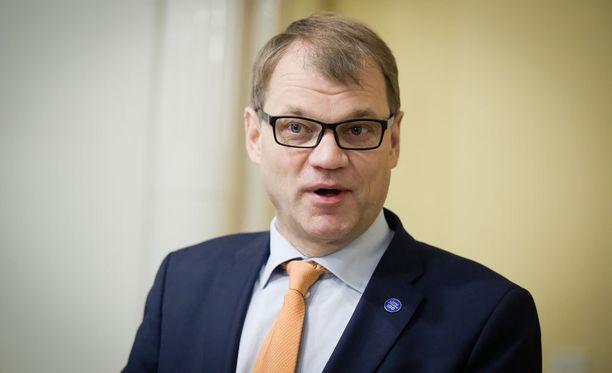 Pääministeri Juha Sipilä uskoo talouden elpyvän yli odotusten.