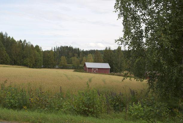 Mikäli käräjäoikeuden tuomio jää voimaan, siskoksista tulee aikanaan merkittävän maaomaisuuden perijöitä. Kuvituskuva Pohjois-Savosta.
