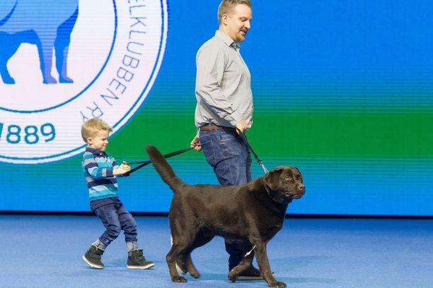 Daniel Furu, Sauli ja Otto koiramessuilla.