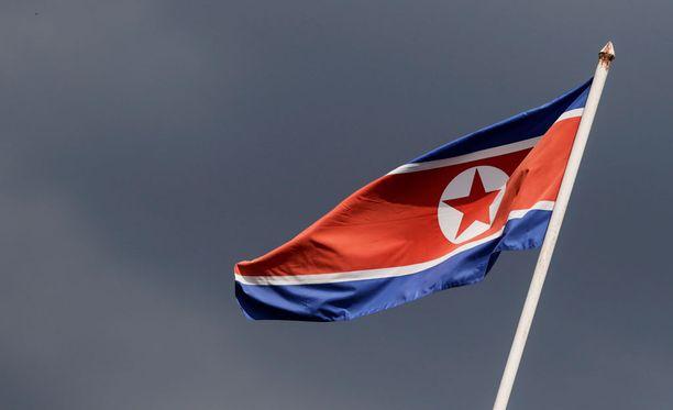 Amerikkalaisprofessori pidätettiin Pjongjangin lentokentällä.