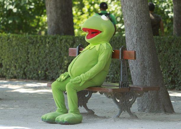 Kermit-sammakko lepäili Madridissa, kun lämpötila lähestyi 40:ää astetta.
