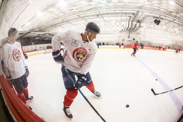 Florida Panthersin kapteeni Aleksander Barkov otti pitkän lennon jälkeen tuntumaa Hartwall-areenan harjoitushallin jäähän.