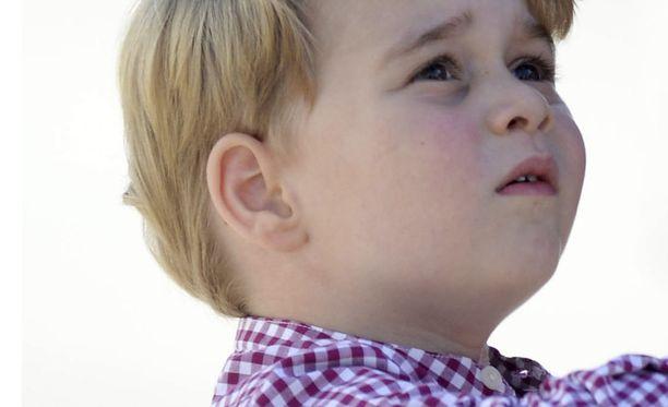 Prinssi George tykkää kaivinkoneista.