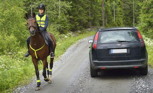 Tärkeintä hevosen kohtaamisessa on auton vauhdin hiljentäminen. Äkkinäisiä kiihdytyksiä ja liikkeitä tulee välttää.