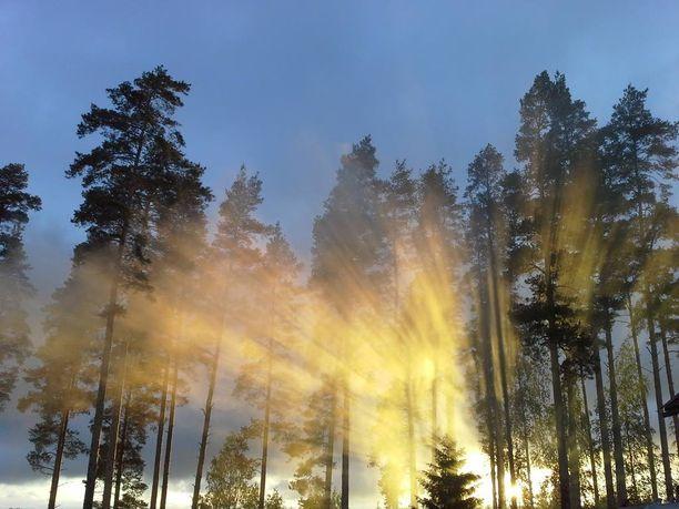Ilta-auringon valo siivilöityi kauniisti savusaunasta leijailleen savun läpi Länsi-Uudenmaan Ikkalassa lauantaina.