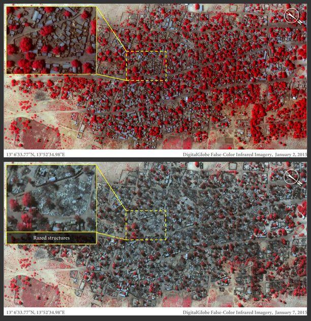 Ennen ja jälkeen -kuvat Boko Haramin tuhoamasta kyläsä kertovat hävityksestä. Punaisella merkityt puut ovat eläviä, harmaat poltettuja.