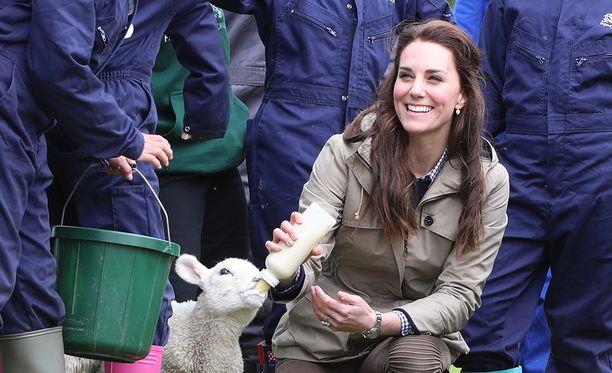 Herttuatar Catherine tulee mainiosti toimeen eläinten kanssa.