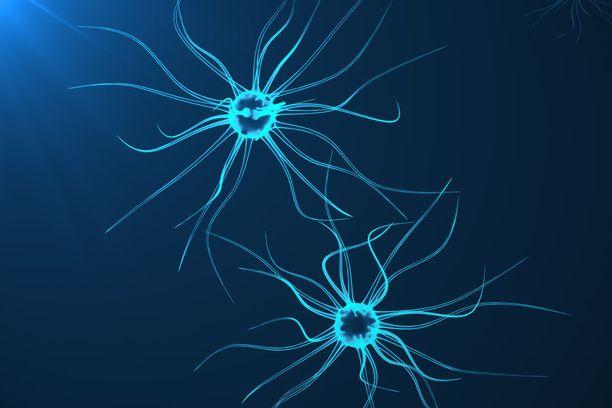Varhaisimmat merkit Alzheimerin taudista ovat molekyylitason muutokset hermosolujen välisessä viestinnässä.