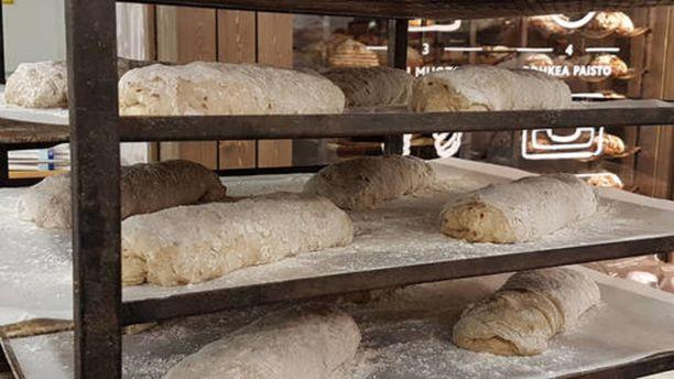 Maailman ensimmäiset käsin leivotut hyönteisleivät herättävät kiinnostusta myös maailmalla.