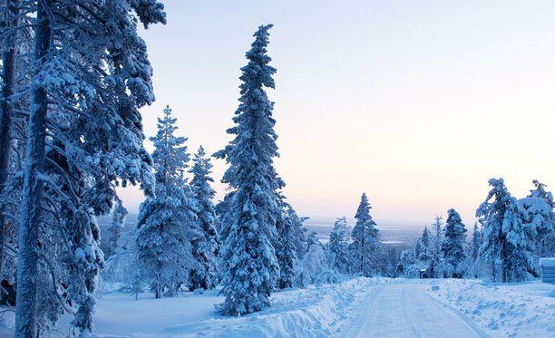 Suomen talvi ihastuttaa ulkomaalaisia.