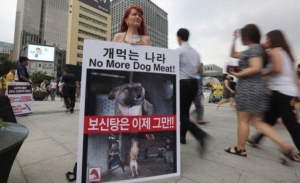 Etelä-Koreassa on kampanjoitu koiranlihaa vastaan.